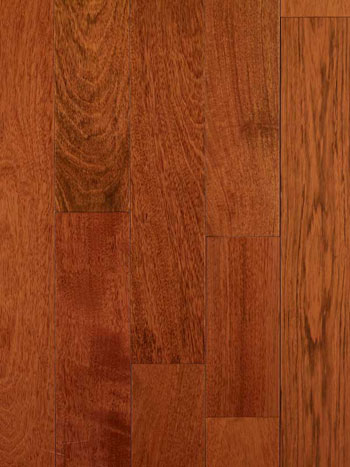 Protect Your Hardwood Floor From Moisture Problems