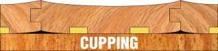Cupping Illustration