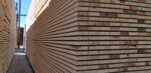 hardwood lumber grades