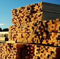 Sawn Lumber Stacked to Dry