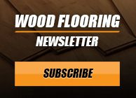 WF-Newsletter-Subscribe