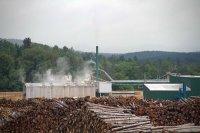 Milan Lumber Piles