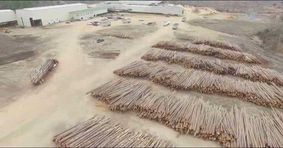 Teal Jones Lumber relies on Wagner Meters moisture measurement technology.