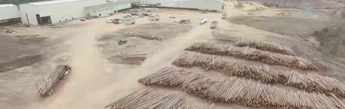 Teal-Jones Lumber