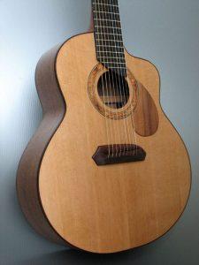 Wagner Meters Wood Shop Custom 9-string Guitar