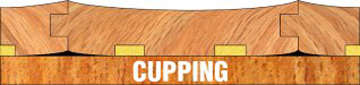 Cupping is caused by moisture content