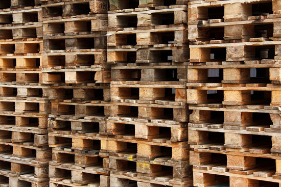 moisture-related damage in wood pallets
